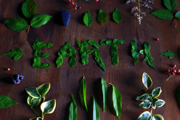 Aerial view of green foliage spelling EARTH on brown counter to encourage an eco-friendly oral care routine on Earth Day